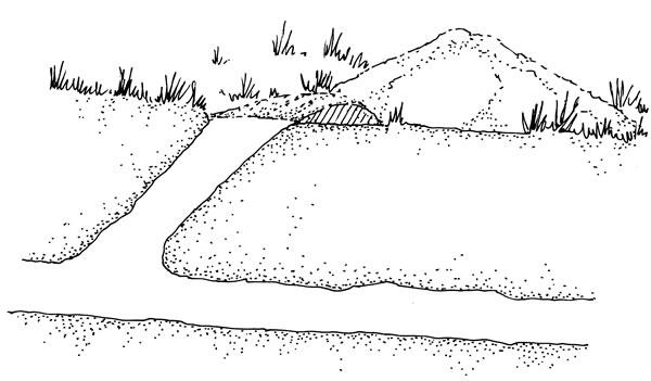 Gopher tunnel Diagram