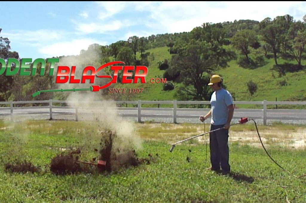 Killing gophers with a rodent blaster