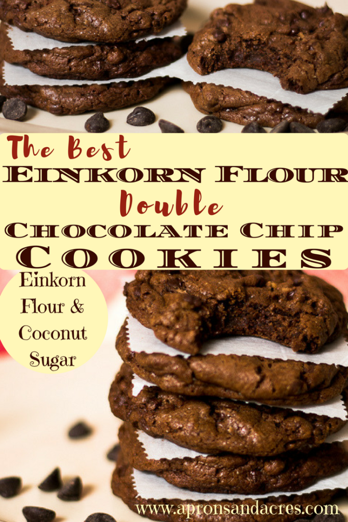 The Best Einkorn Flour Double Chocolate Chip Cookies